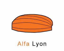 Alfa Markiezen Lyon